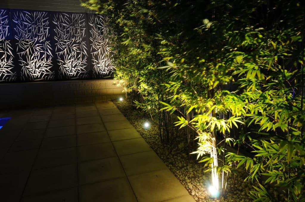 lighting garden with LED lights